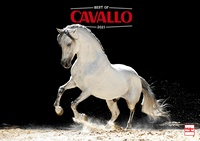 Best of Cavallo 2021